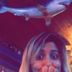Photo of Sharky's Cantina