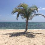 Foto de Wyndham Reef Resort