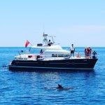 Bouncing Betty Speedboat