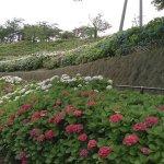 Foto de Takatoyama Park