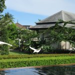 Perennial Resort Photo