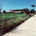 Photo of Agriturismo Bellarosa