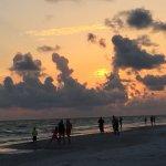 Sand shark, birds and sunset