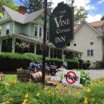 Vine Cottage Inn Foto