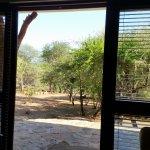Bushwise Safaris Picture