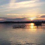 Photo de Torch Lake Bed & Breakfast