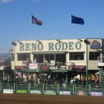 Reno Rodeo and Cattle Drive, Reno, NV (June 2016)