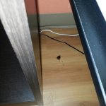 Dead roach between night stand and bed