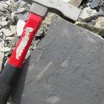 写真U-Dig Fossils枚