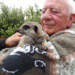 Dad with the Meerkat