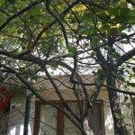 BEST WESTERN PREMIER Regency Suites & Spa Foto