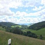 Photo de Waldhotel Bad Sulzburg
