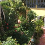 beautiful garden, a view from our room