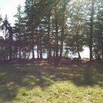 Photo de Spencer Pond Camps