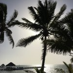Foto de La Perla Del Caribe