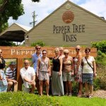 Peppe Tree Wines. A great place to stop on one of our Catchabus Tours Wine Tasting Trips.
