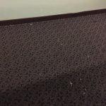 Paint & putty in hallway carpet