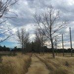 Baylands Park