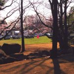 Fuchunomori Park