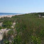 Kirk Park Beach Foto