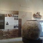 Museo etrusco di Populonia - Collezione Gasparri