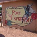 Pony Espresso