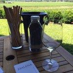 Great tasting on the patio overlooking the vinyard at Zialena
