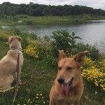 Slip Bluff County Park