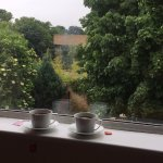 Rainy day view of the back garden with complementary tea.