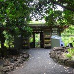 Photo of Huelo Lookout Fruit Stand