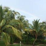 Taino Beach Resort & Clubs Foto