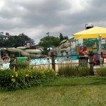 Turtle Splash Water Park