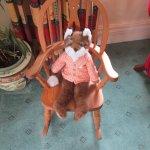 One fox ... reclining!