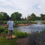 Foto de Swan Lake Resort