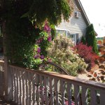 Foto di Serenity Ranch Bed and Breakfast