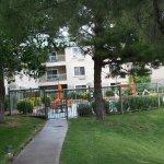 Foto di SpringHill Suites Las Cruces