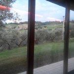 Photo of Agriturismo Terra del Vento