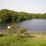 佐布里池周辺