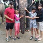 Photo de Elephant Junction - Day Tours