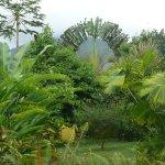 Catarata Eco Lodge S.A 사진