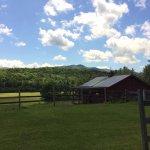 Photo de Yellow Farmhouse Inn