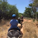 Riding with Trailhorse Adventures in Dead Horse Ranch State Park