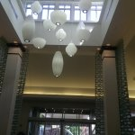 Hilton Garden Inn Tampa East/Brandon Photo
