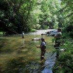 Photo de Nantahala River Lodge