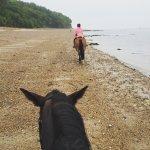 Foto de Sally's Riding School