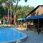Yüzme Havuzu/ Dinlenme ve Güneşlenme alanı