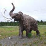 Foto de Yukon Beringia Interpretive Centre