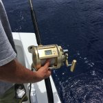 Photo de Captain Easy Private Fishing Charters