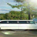 Raffi's Limousine Service