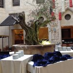 Live olive tree in open courtyard dining area
